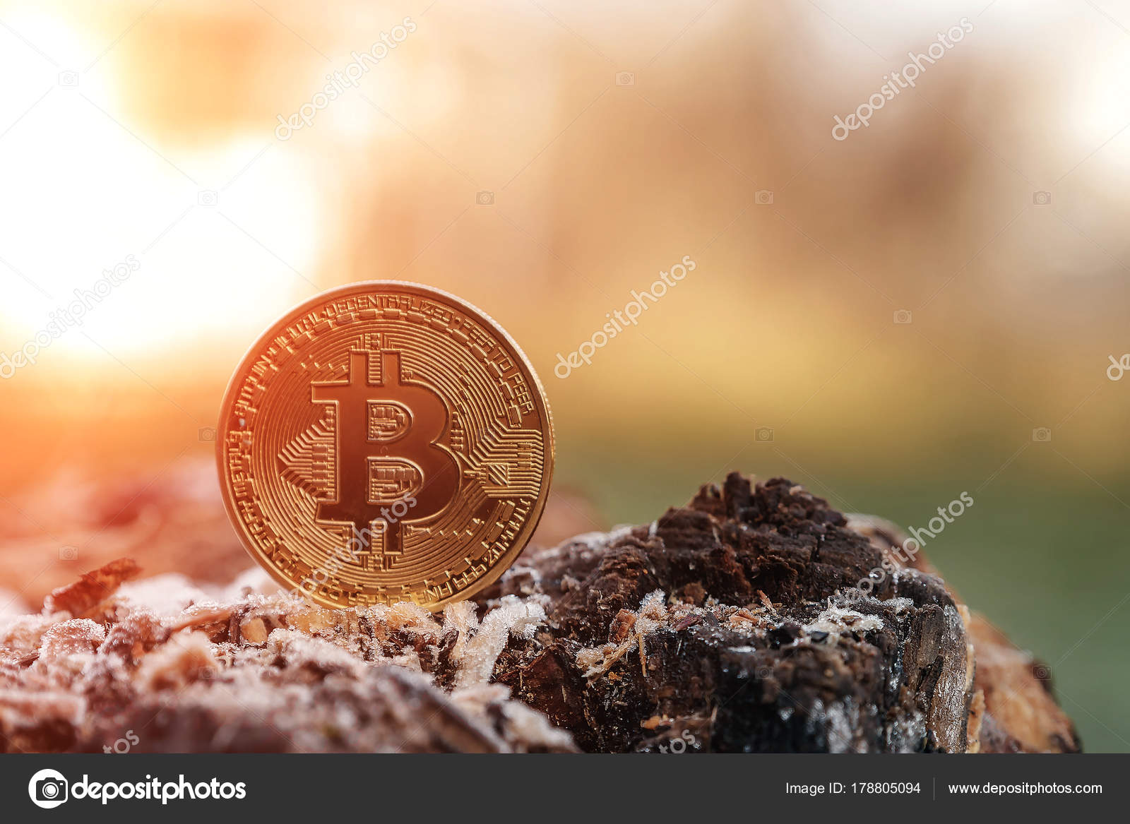 bitcoins images of nature