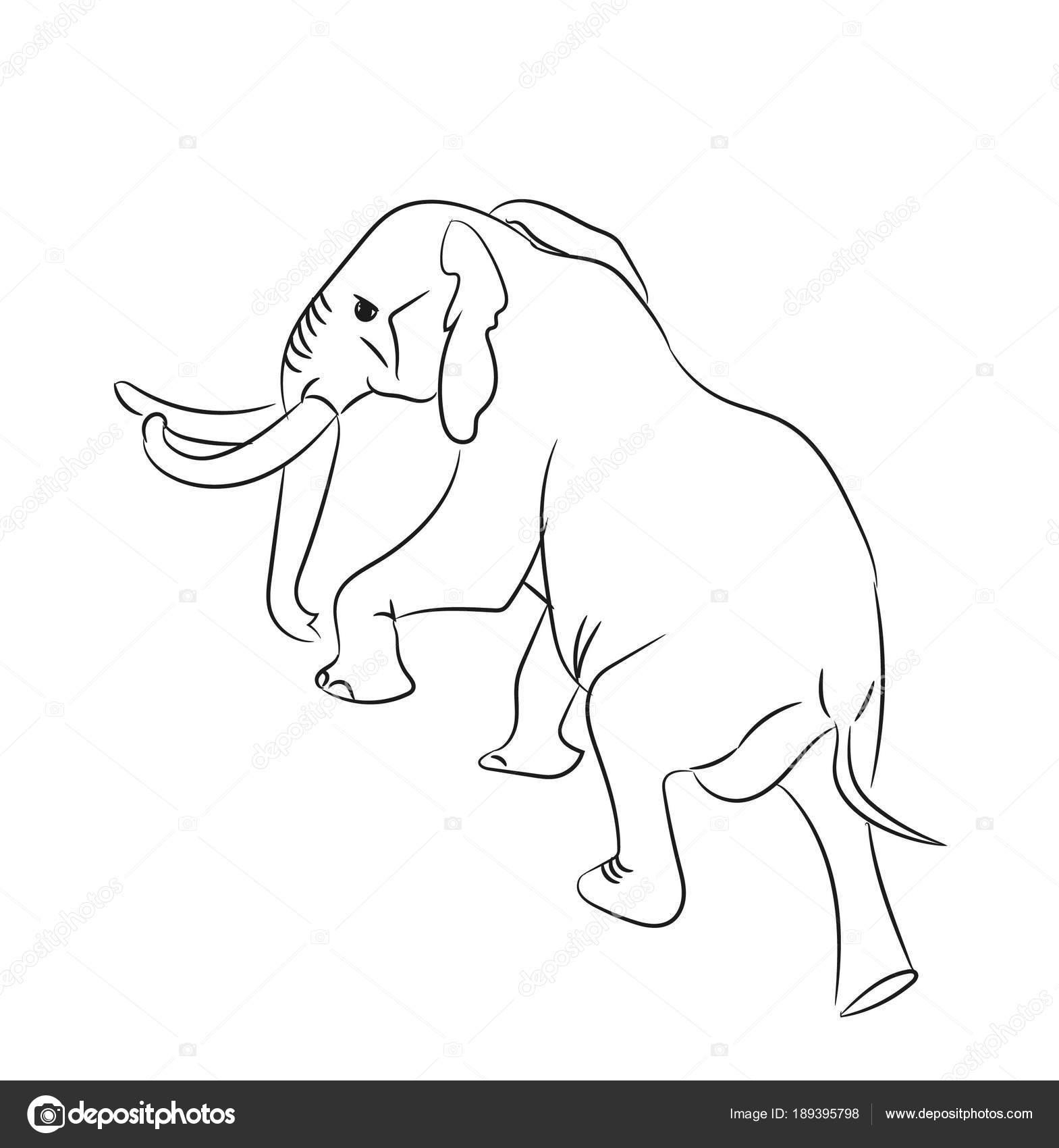 línea gráfica elefante, van, vector — Archivo Imágenes Vectoriales ...