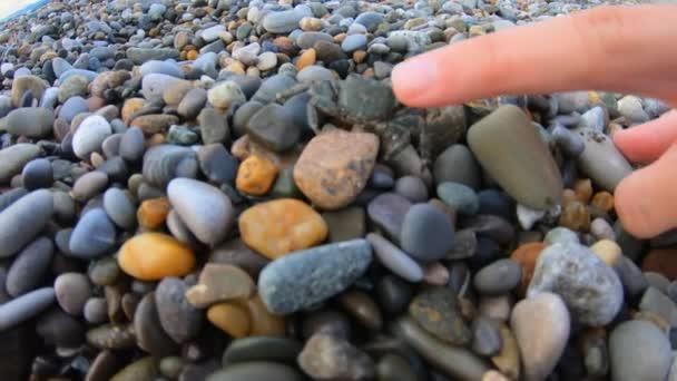 Žena se snaží dotknout prstem malý krab běží na oblázkové pláži vidět vodu. Zobrazení kamery akcí
