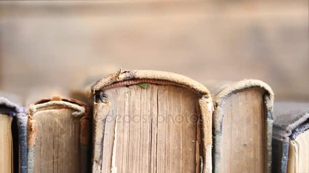 Kniha koncept store, člověk bere knihu