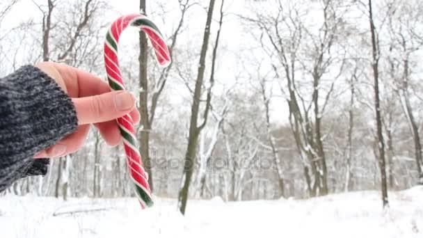 Ruka držící Candy Cane. Zasněžený vánoční krajina. Rozmazané fotografie na pozadí
