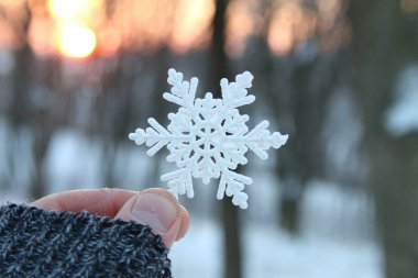 hand holding a snowflake