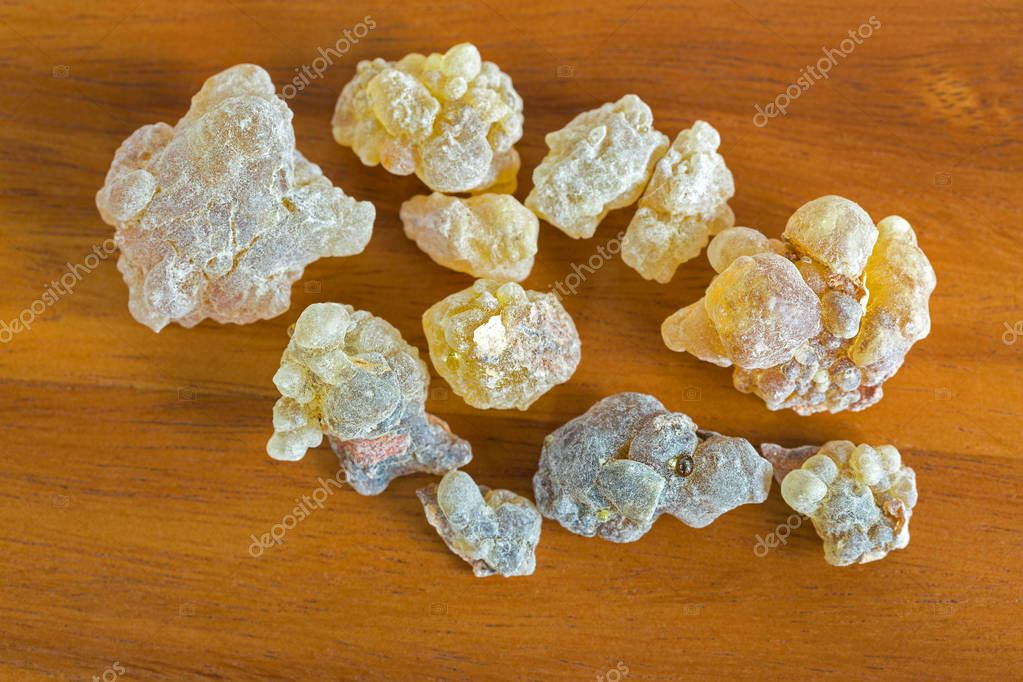 Big rocky pieces of Aromatic yellow resin gum from Sudanese Frankincense tree