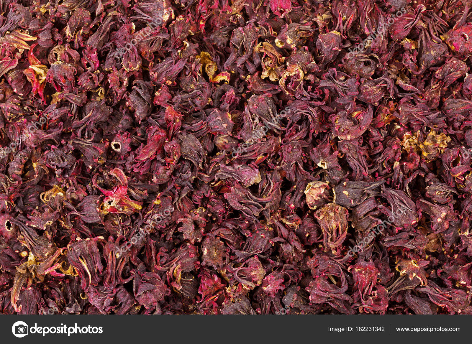 Closeup texture of dried Roselle hibiscus flowers in dark red color ...