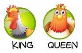 Csirke, hogy király és a királynő
