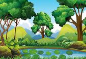 Lesní scénu s stromy a jezírko