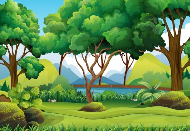 Forest scene with river and trees illustration stock vector