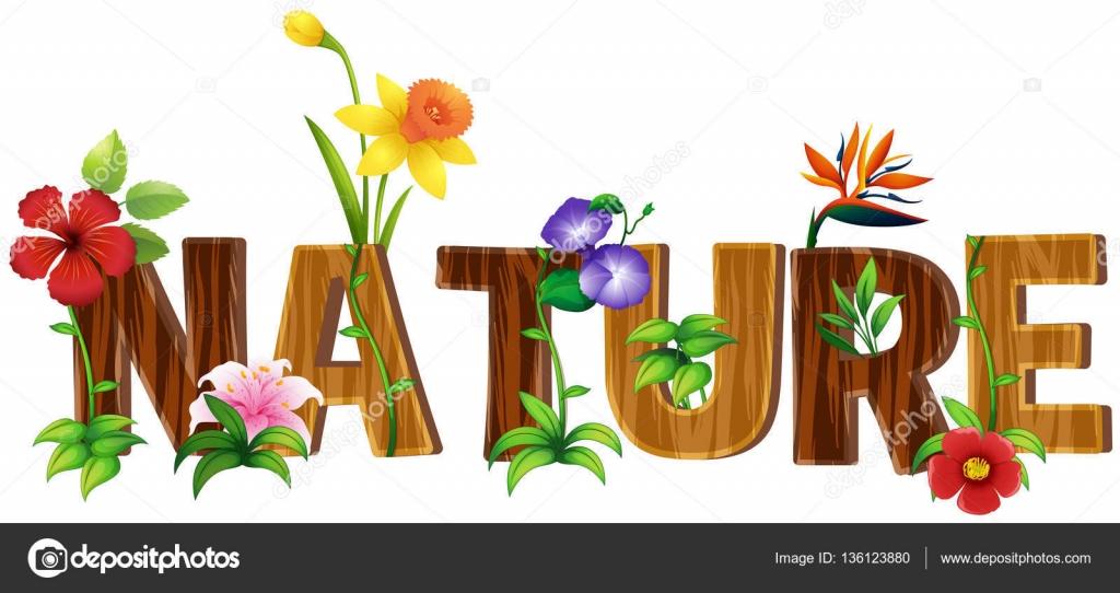 cr ation de polices pour mot nature avec diff rents types de fleurs image vectorielle. Black Bedroom Furniture Sets. Home Design Ideas