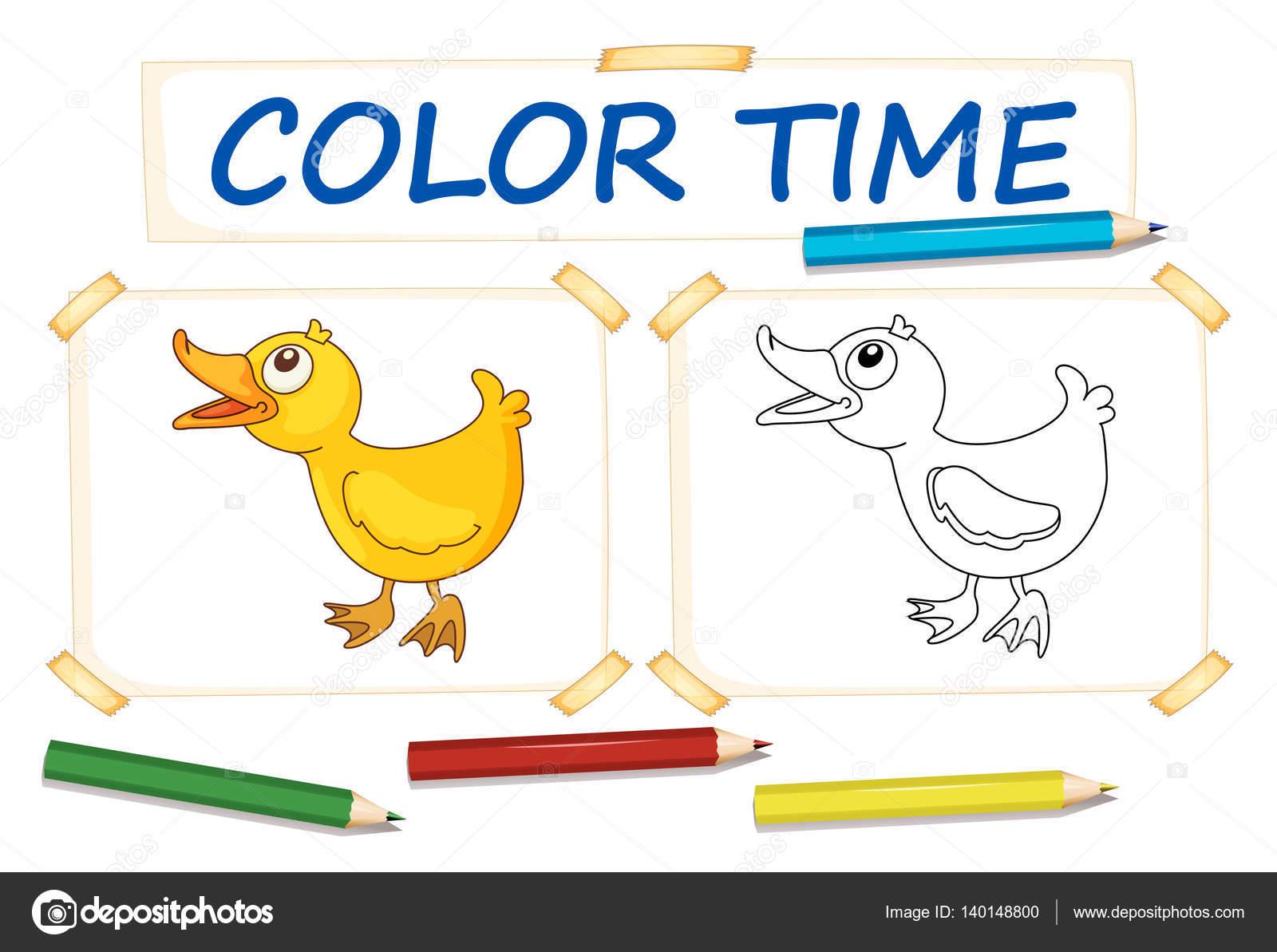 Plantillas para colorear con pato pequeño — Vector de stock ...