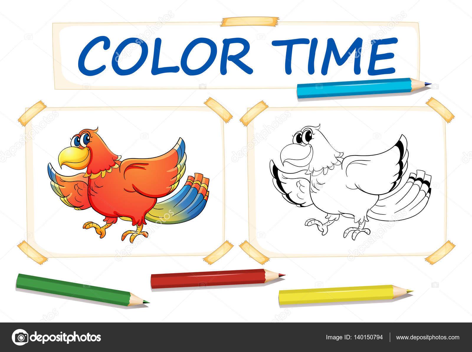 Plantillas para colorear con pájaro de loro — Vector de stock ...