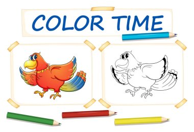 Coloring template with parrot bird