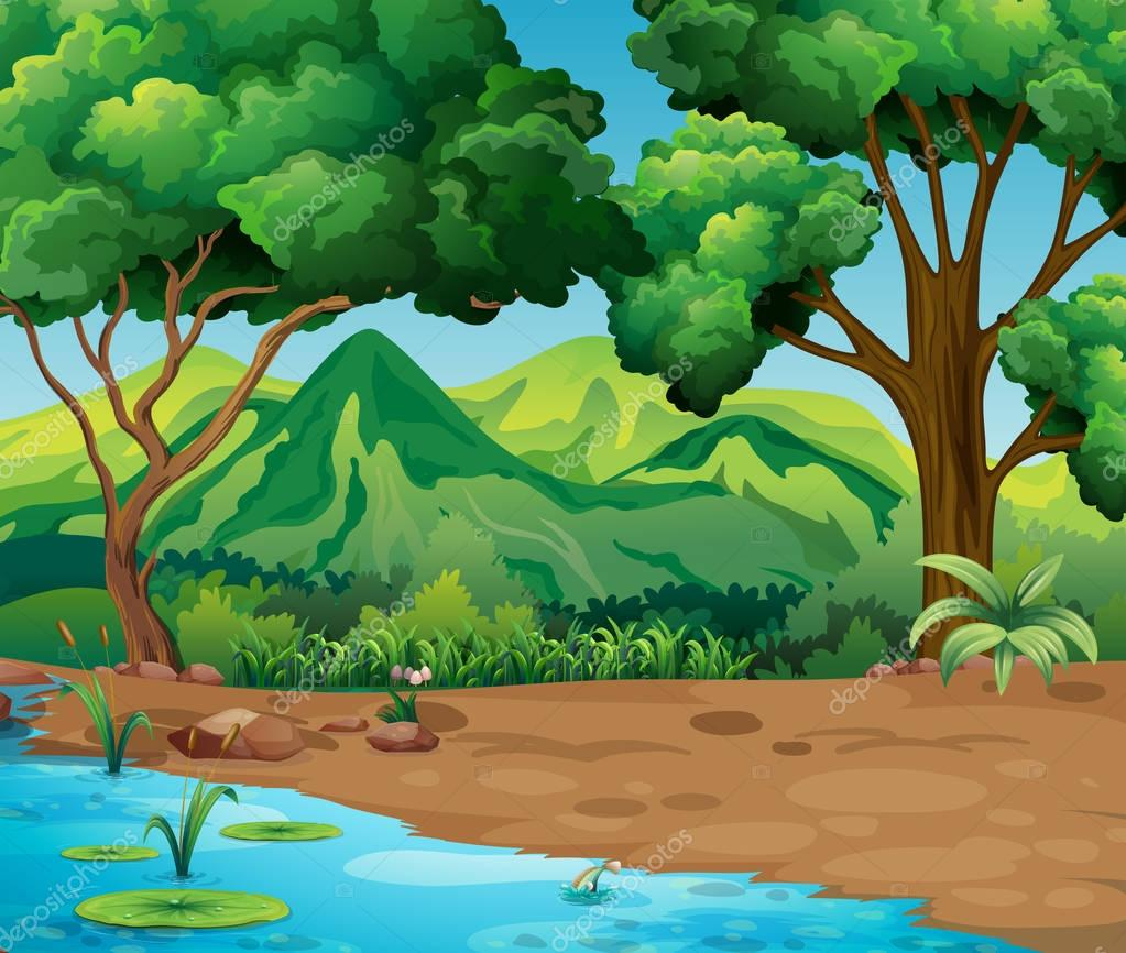 Scene with trees and river in forest