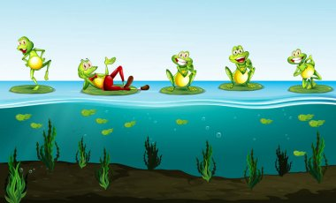Five green frogs in the pond