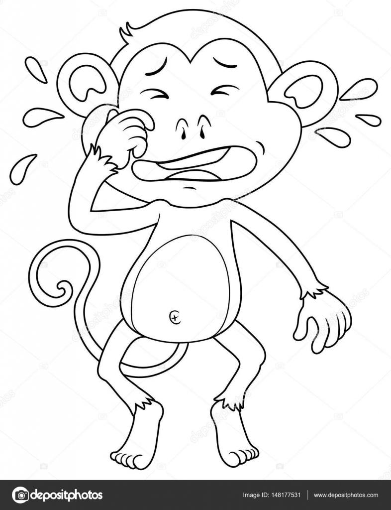 Animal esquema mono llorando — Vector de stock © interactimages ...