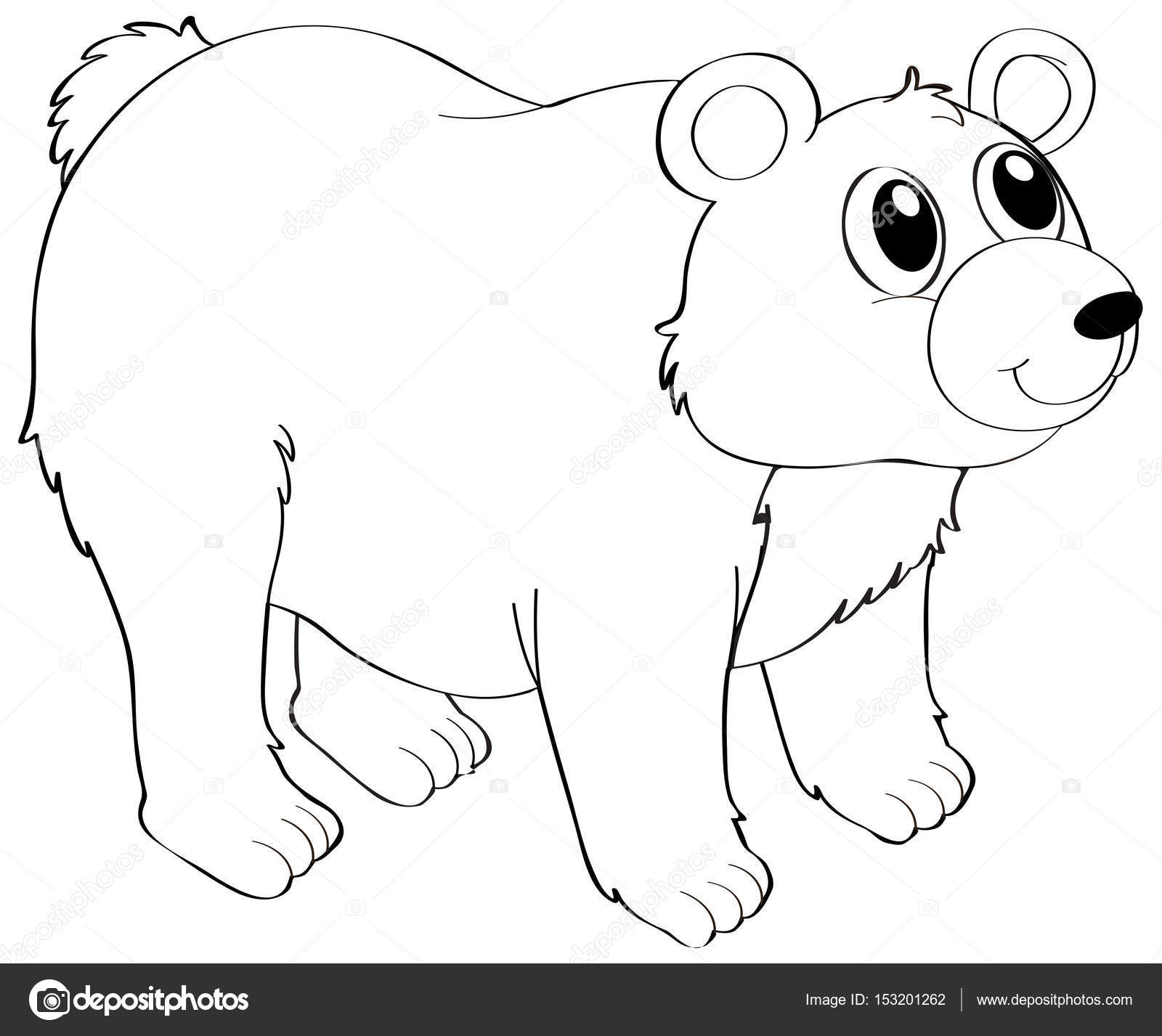 Imágenes Oso Grizzly Para Colorear Animal Esquema De Oso Grizzly