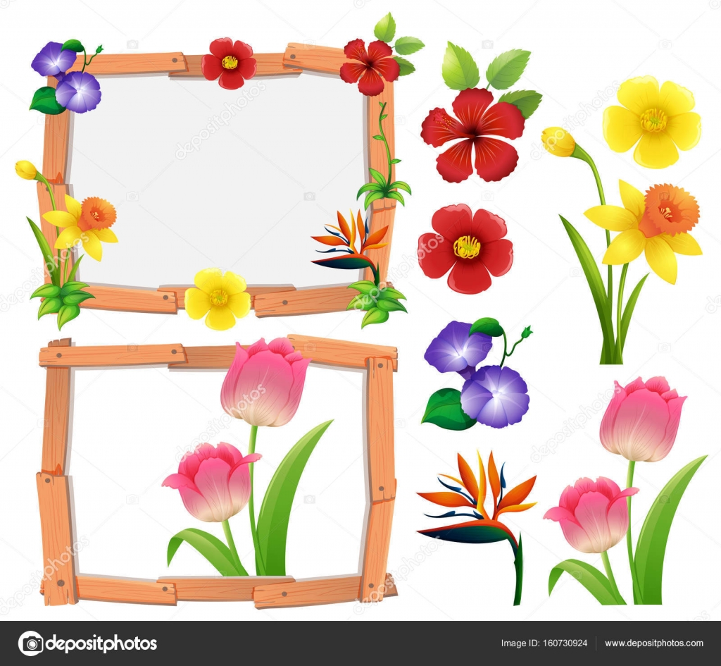Frame Template With Different Types Of Flowers Stock Vector