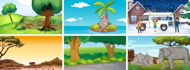 Different background scenes of nature