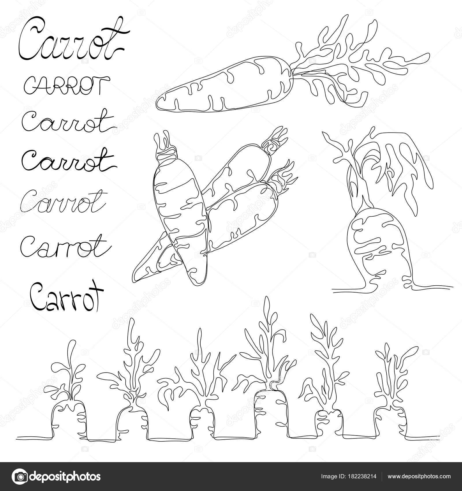 Dibujos Los 4 Elementos Naturales Para Colorear Con 4 Imágenes De