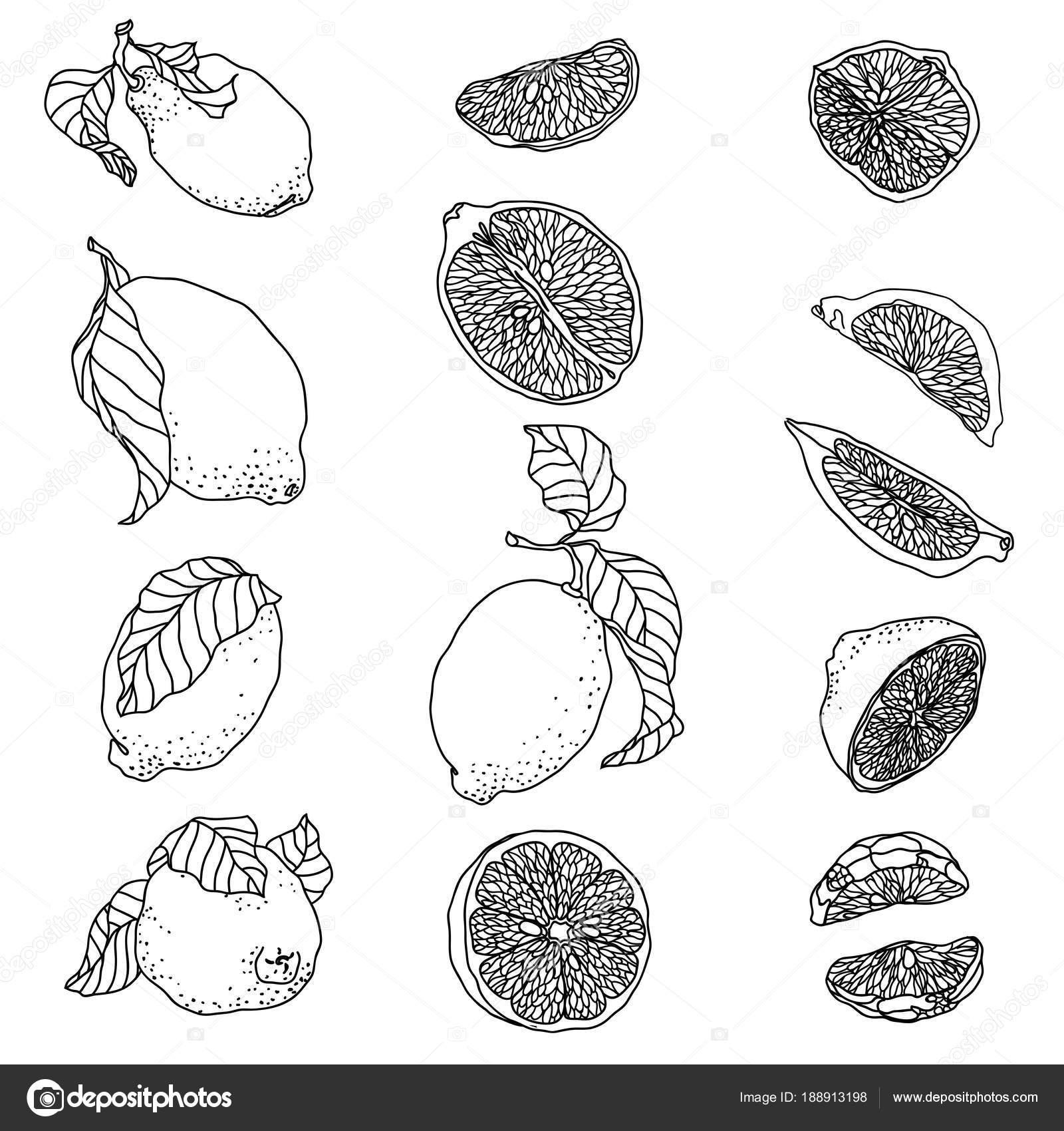 Dibujos Ensalada De Frutas Para Pintar Conjunto Con