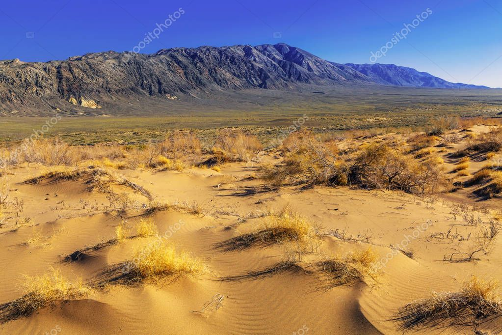 Sand dune passing to the steppe and stone mountains