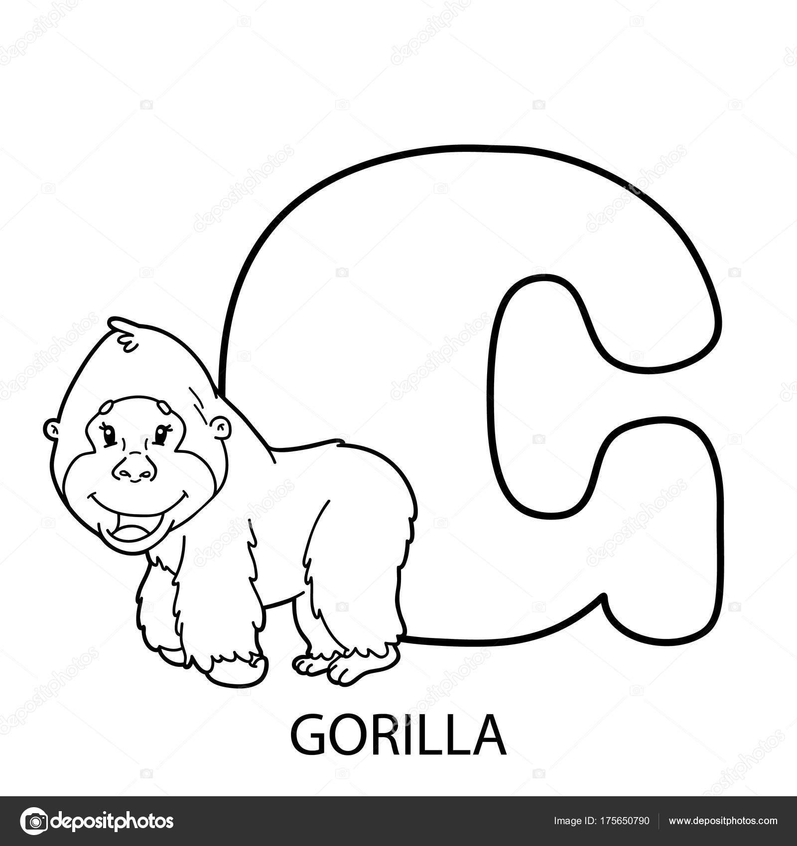 Página Para Colorear Alfabeto Animales Ilustración Vector Alfabeto ...