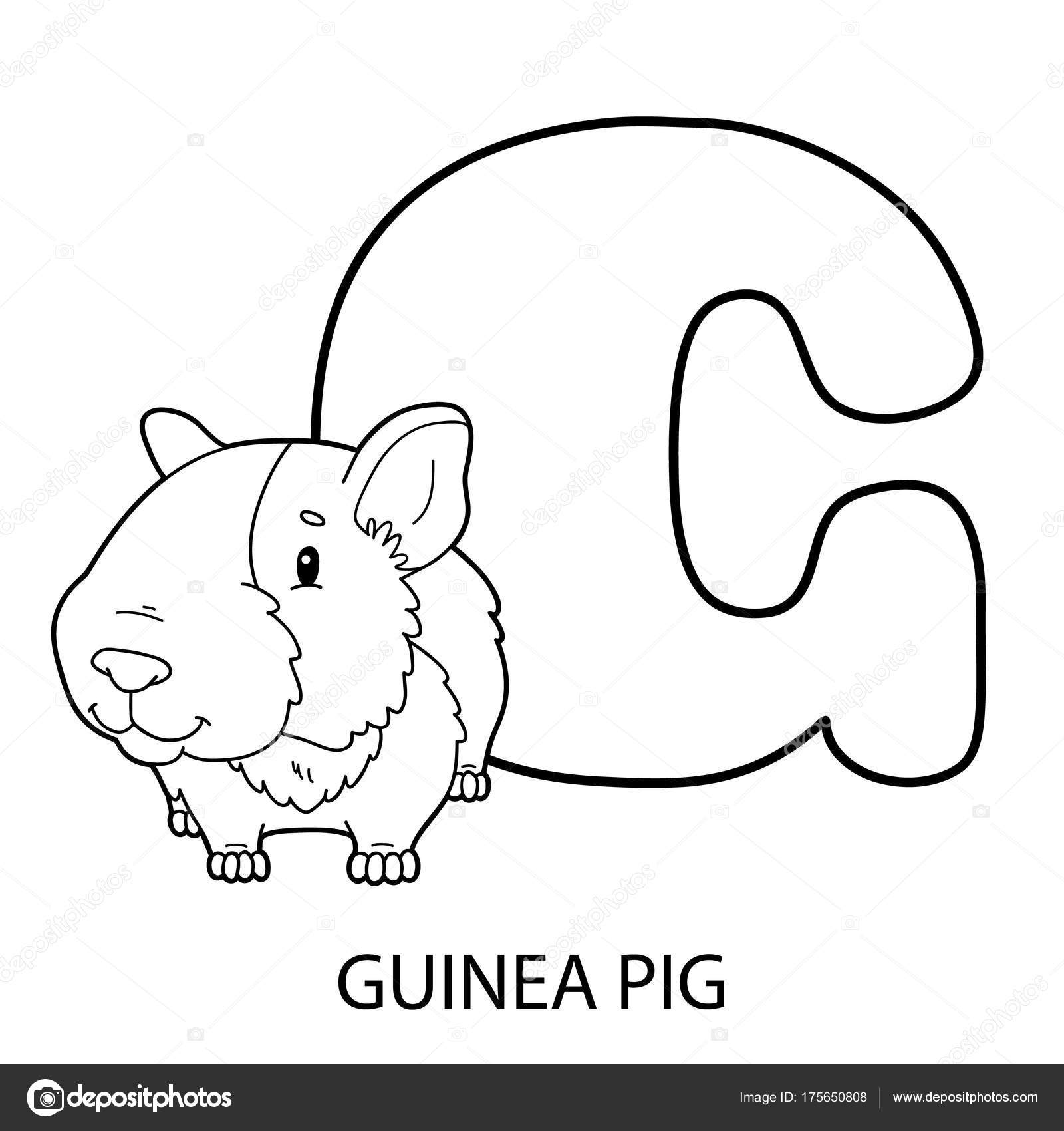 Animal Alphabet Coloring Page Vector Illustration Educational ...