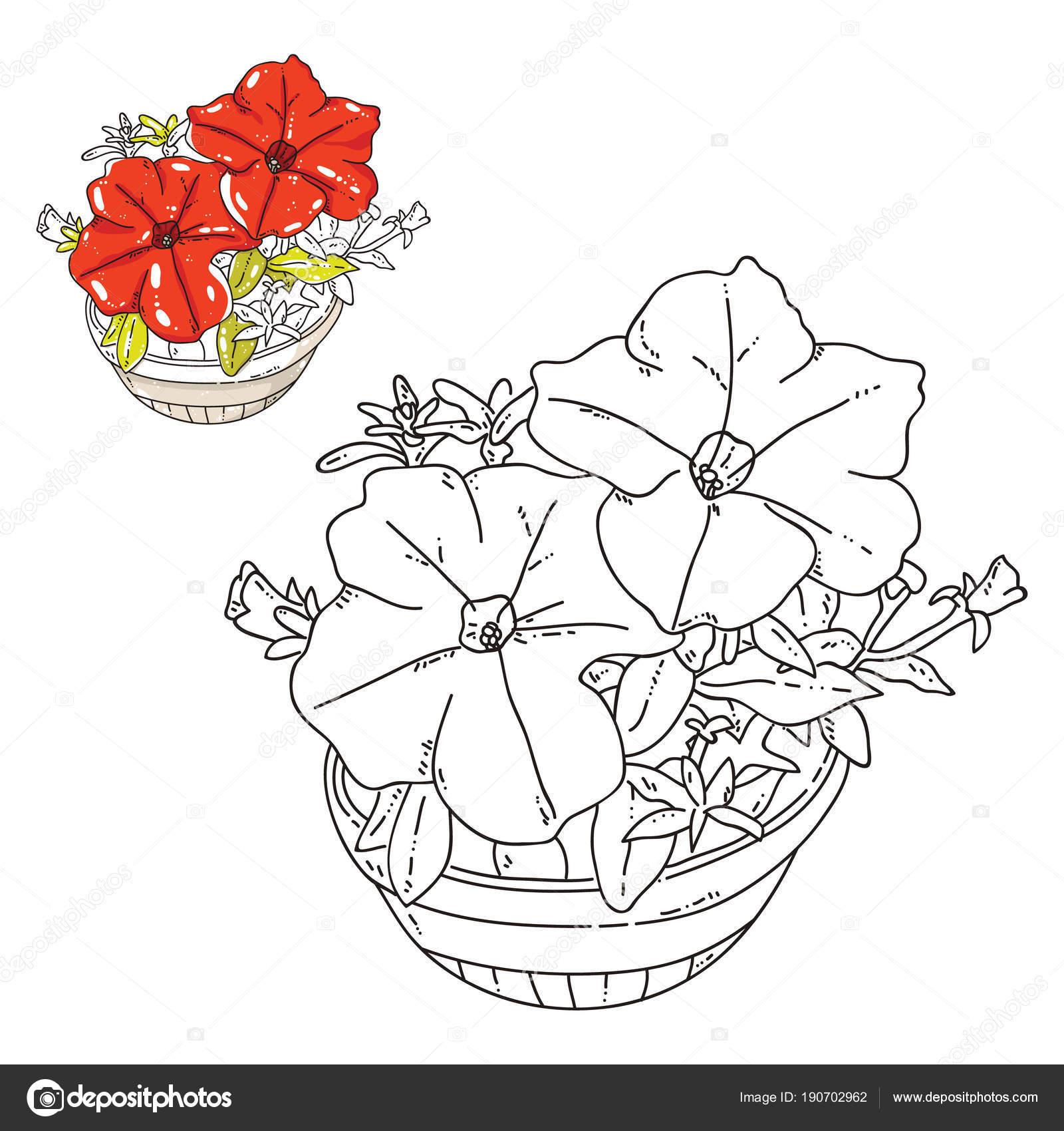 Vektor Erwachsene Malvorlagen Mit Blumen Und Bunten Beispiel