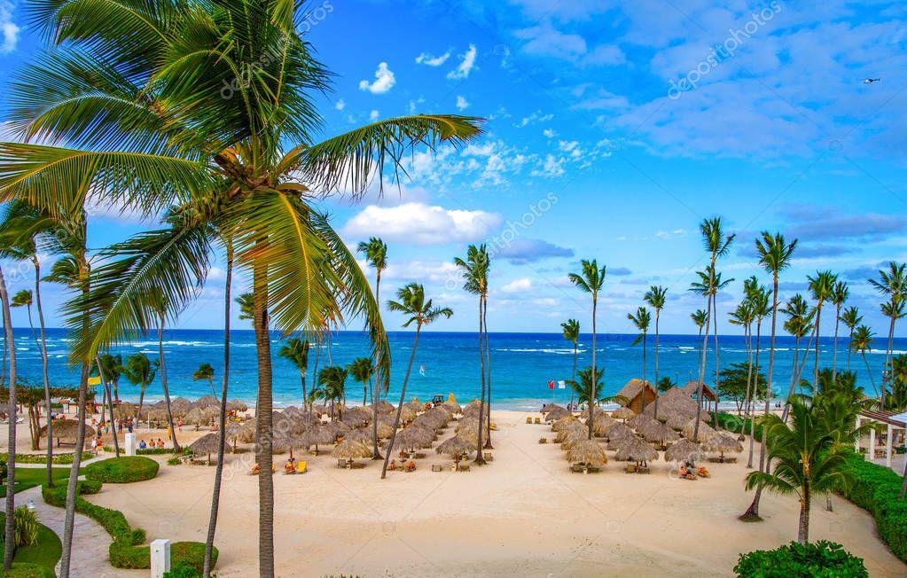 Palm umbrellas on the sandy beach of B��varo. Dominican Republic