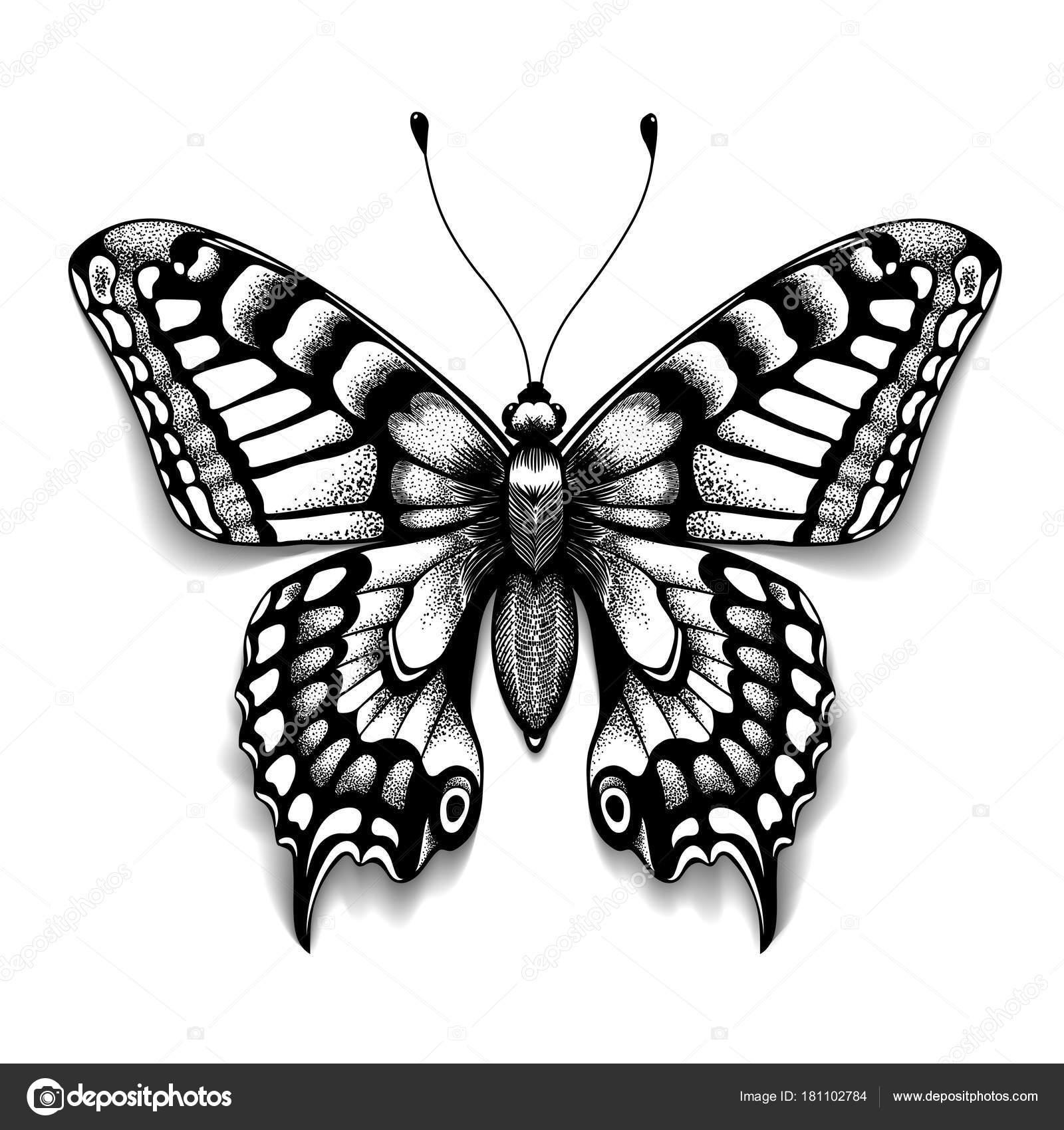 Dessin Papillon Tatouage tatouage papillon d'art pour la conception et la décoration