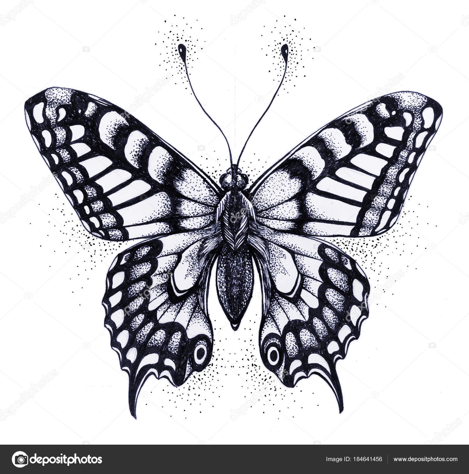 Silhouette of butterfly symbol of soul immortality rebirth and tattoo butterfly symbol of soul immortality rebirth and resurrection isolated sketch of butterfly black and white tattoo photo by natalypaint buycottarizona