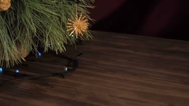 Vánoční věnec na větve stromů jedle. Větve stromů blízko, posunout pohybem, panorama