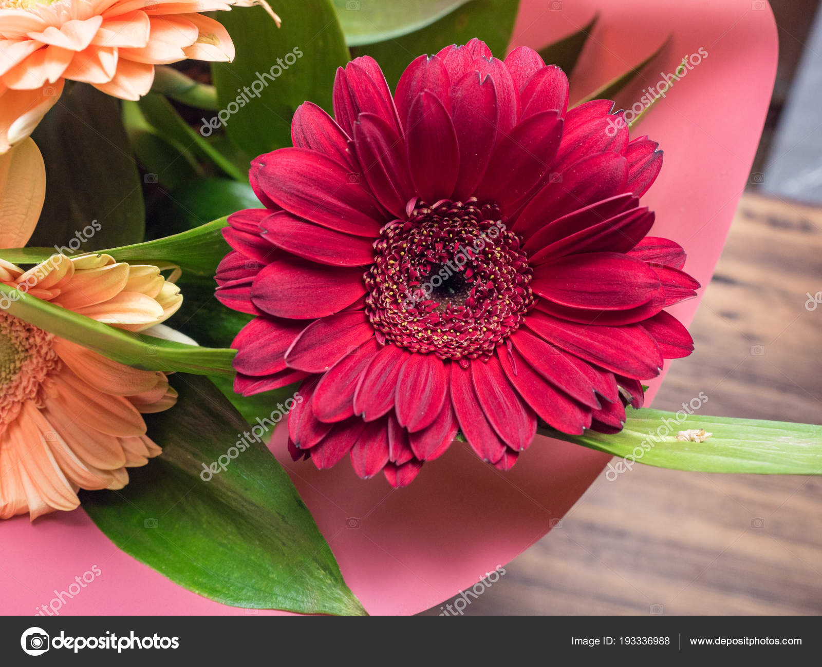 Red bud of flower closeup flower of chrysanthemum with decorative red bud of flower closeup flower of chrysanthemum with decorative greenery decoration made of decorative plants for birthday card invitation poster izmirmasajfo