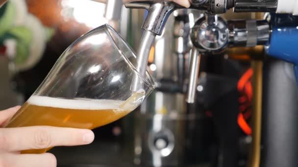 Pivo nalévání a pěnění ve skle na černém pozadí hospody detailní záběr Zpomalený pohyb. Zlaté pivo se nalévá do skla a vytváří bubliny a pěnu. hd video
