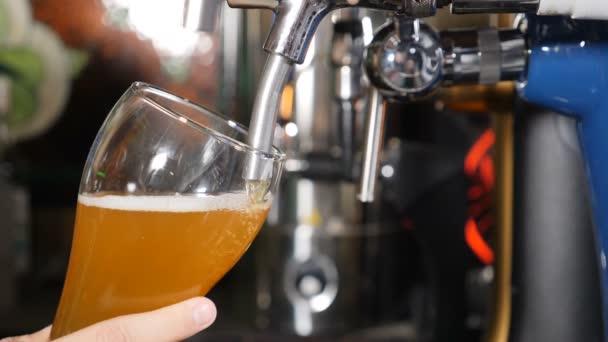 A csapos könnyű sört önt az üvegbe. Közelkép. Sört öntenek, habot öntenek az üvegbe, fekete háttérrel. Lassú mozgás. hd videó