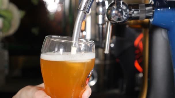 Bier ergießt sich und schäumt in Glas auf schwarzem Pub Hintergrund Nahaufnahme Zeitlupe. goldenes Bier, das in Glasblasen und Schaum gegossen wird. hd video