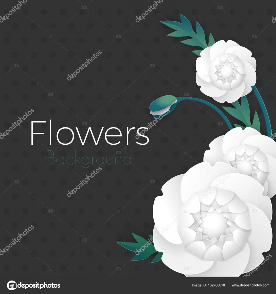Greeting Card Design For Weddings Birthday Poster Vector Paper