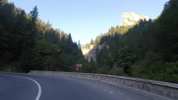 Serpentines road driving
