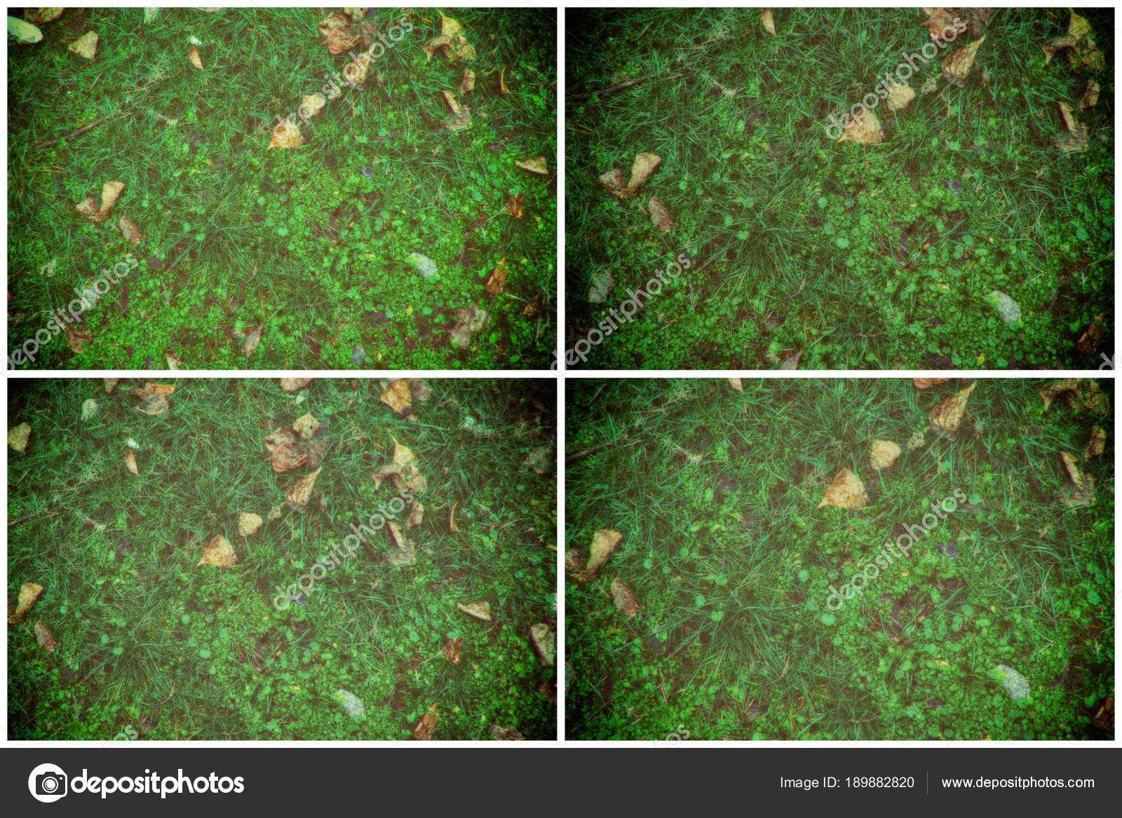 grass field from above. Fall Leaves On Green Grass Field, View From Above, Autumn Background \u2014  Stock Photo Field Above