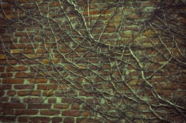 Brick wall stone background - texture for continuous rocks