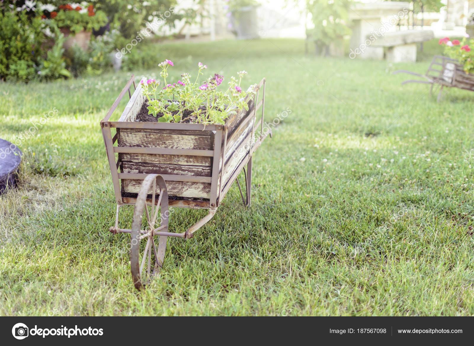 Decorative wheelbarrow in a garden with flower inside. — Stock Photo ...