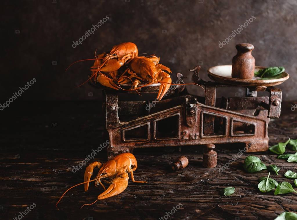 Close-up view of delicious lobsters on vintage scales and basil leaves on rustic wooden table
