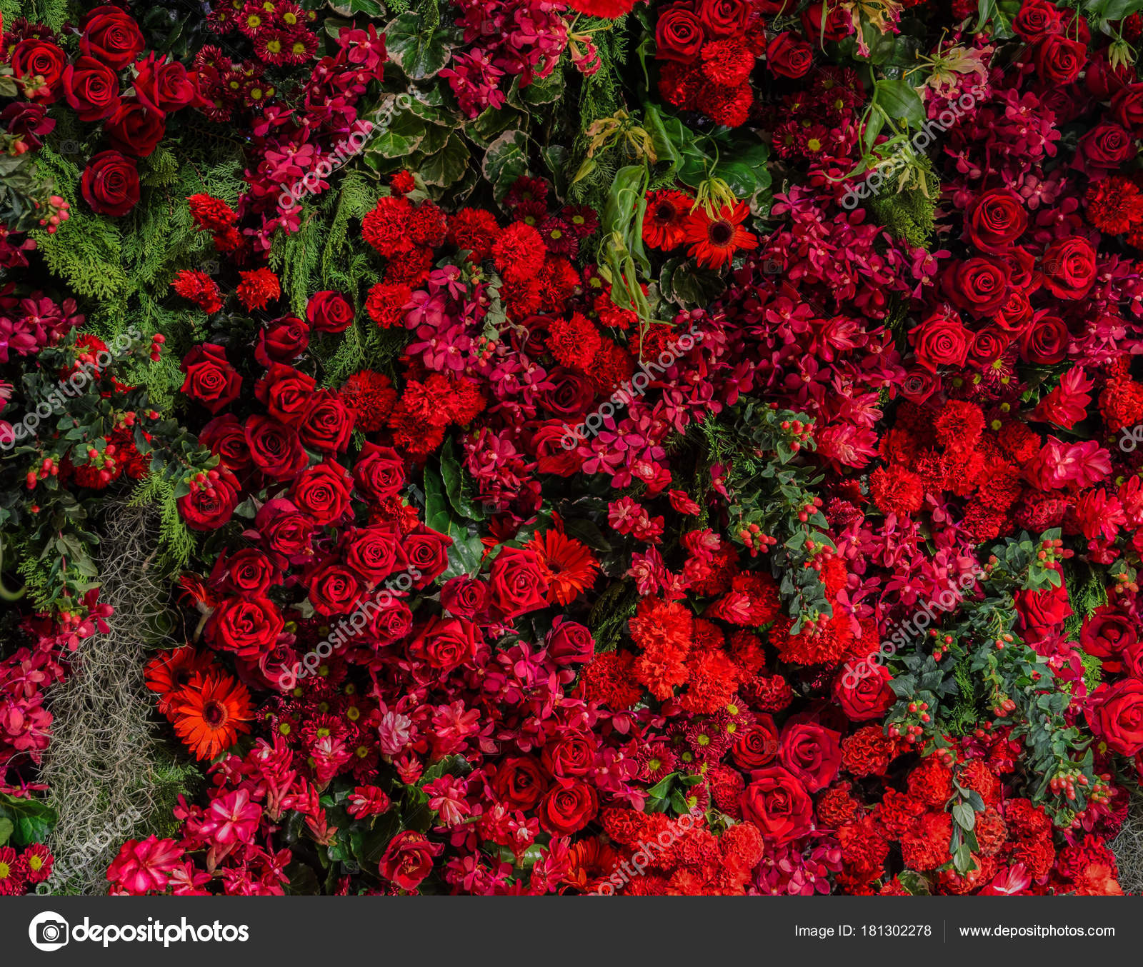 Beautiful fresh red roses and different types of red flowers dec– stock image