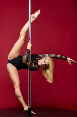 beautiful pole dancer girl