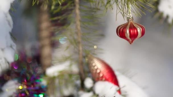 Weihnachtsdekoration auf einer schneebedeckten Kiefer an einem frostigen Wintertag.