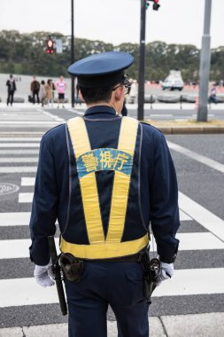 In the picture we can see a Japanese police man standing. At the background we can see few people waiting on the other side to cross the road. stock vector