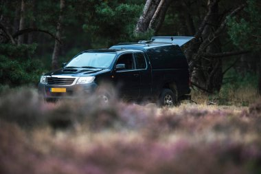 Car of ranger parked near forest