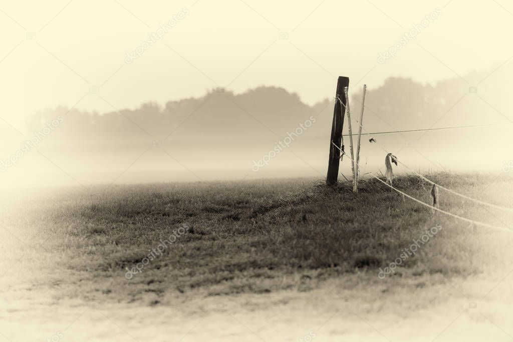 cattle fence on foggy meadow