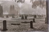 cemetery with trees in mist
