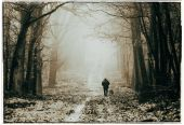 man with dog walking in misty forest