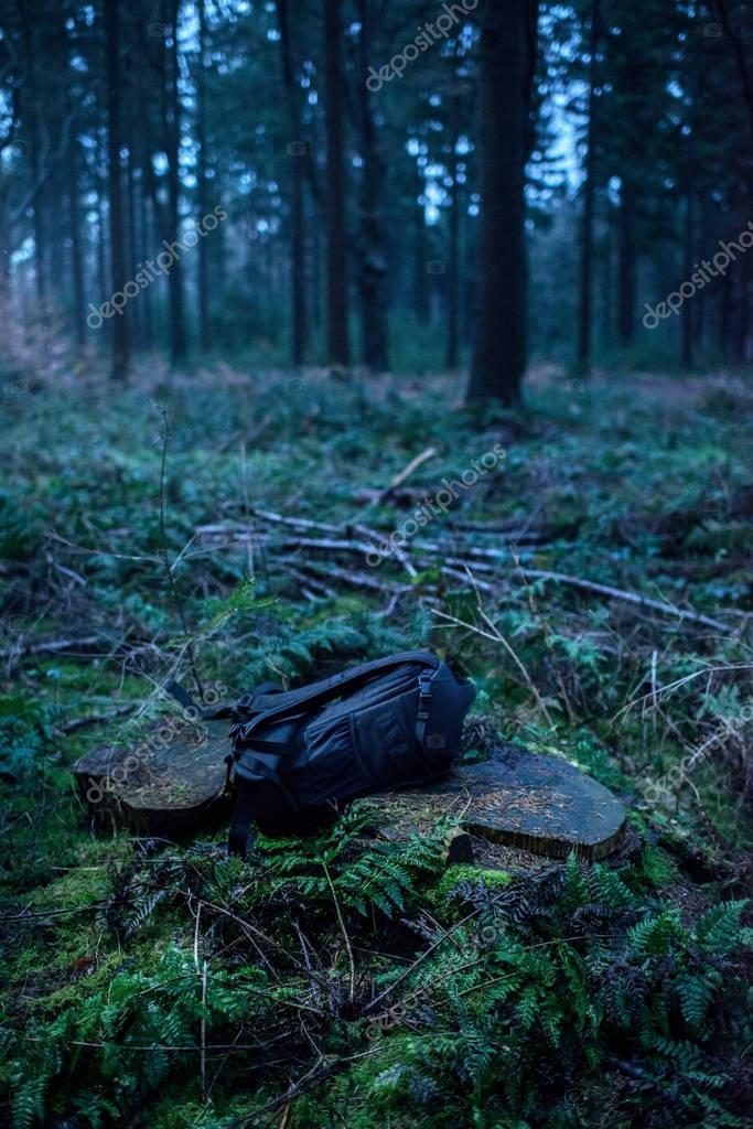 Lost backpack on tree stump